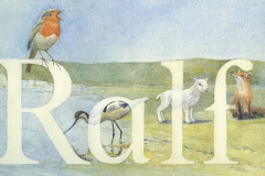Robin-Avocet-Lamb-Fox